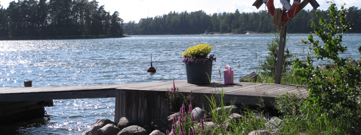 Laituri veden äärellä kesällä.