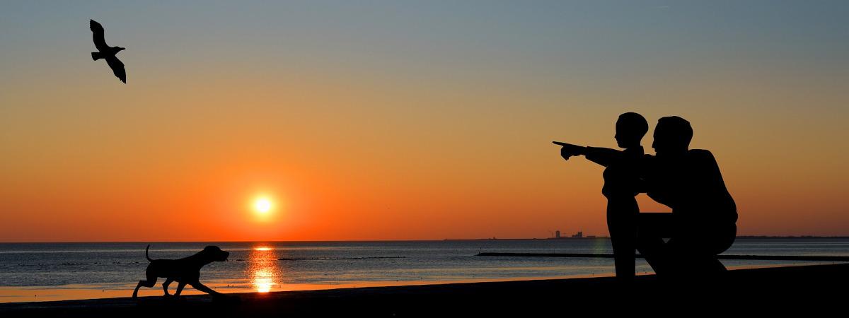 Isä ja poika rannalla auringonlaskun aikaan. Katsovat lentävää lintua.